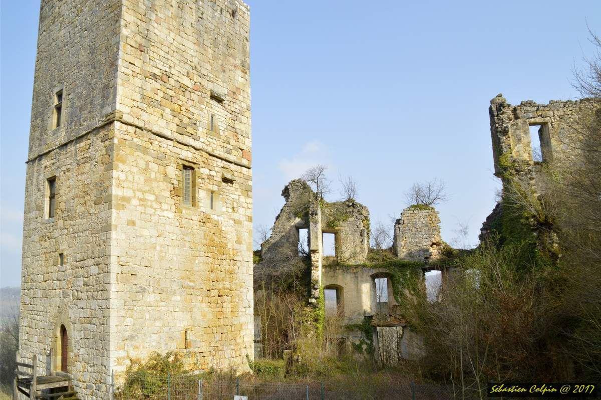 Ruines du Château de Couzage à Chasteaux