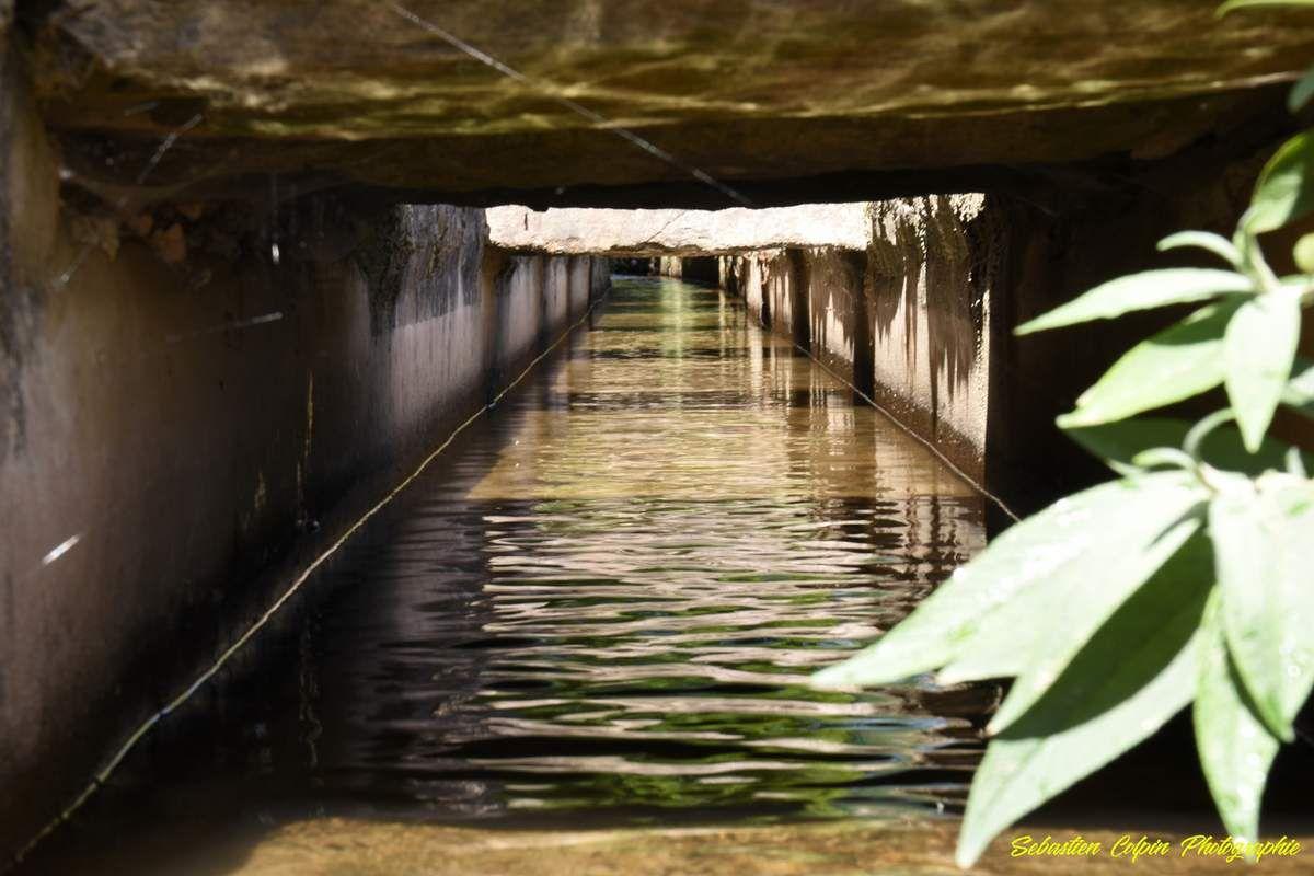 Le Canal des Moines à Aubazine en Corrèze, une oeuvre cistercienne