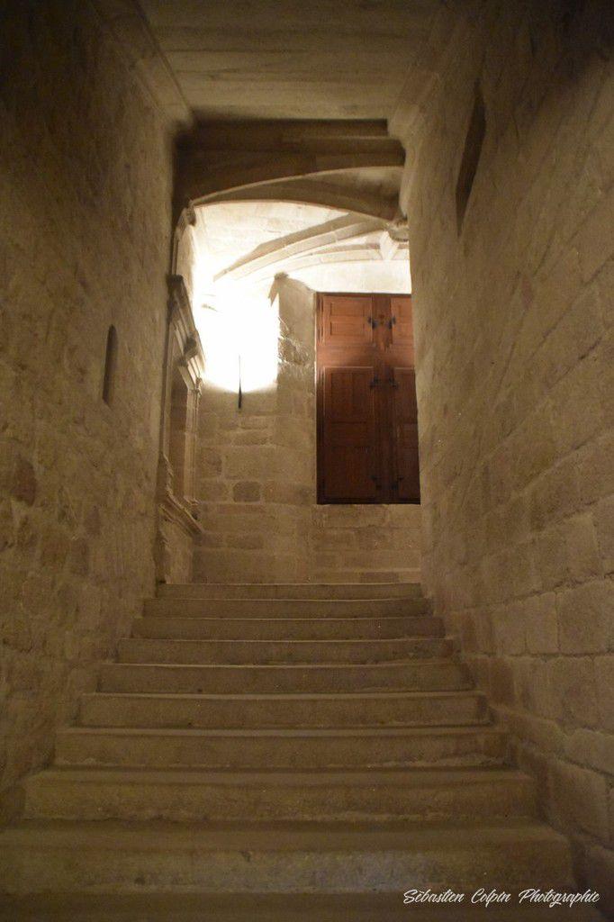 Le domaine de Sédières, le château et l'exposition d'Olivier Masmonteil