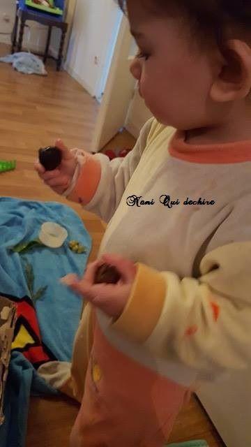 Bac sensoriel Montessori - Activité enfants