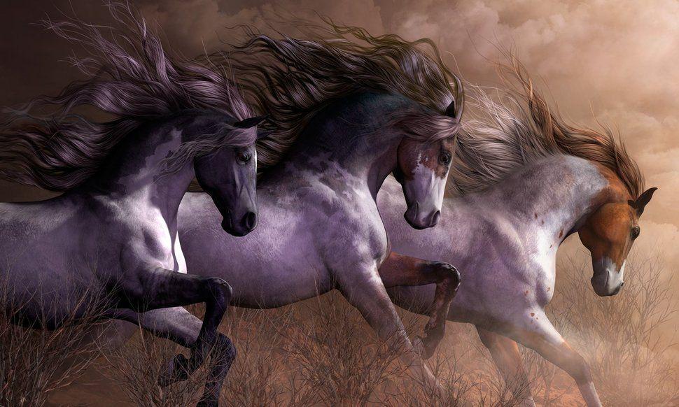 Message du peuple des chevaux à l'humanité