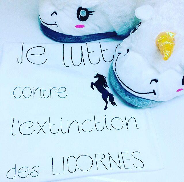Chaussons Licornes - CoolGift.com