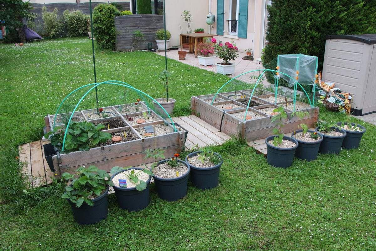 Pas facile de planter un potager qui va déménager