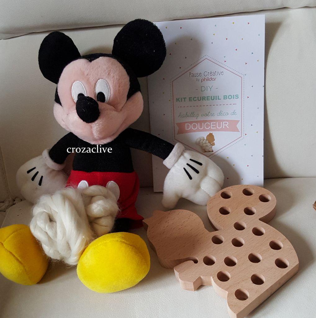 Kits Loisirs créatifs PHILDAR, DIY Ecureuil