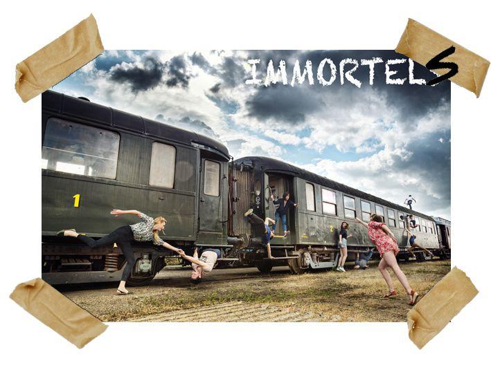 """""""Immortels"""" cie Adhok : spectacle de rue de l'année"""