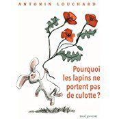 Pourquoi les lapins ne portent pas de culottes - Antonin Louchard