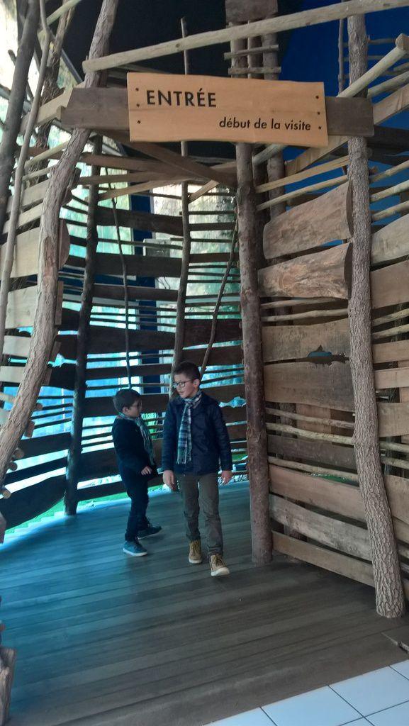 Le grand aquarium de Touraine , un aquarium idéal pour les enfants (bassin tactile, jeux... )