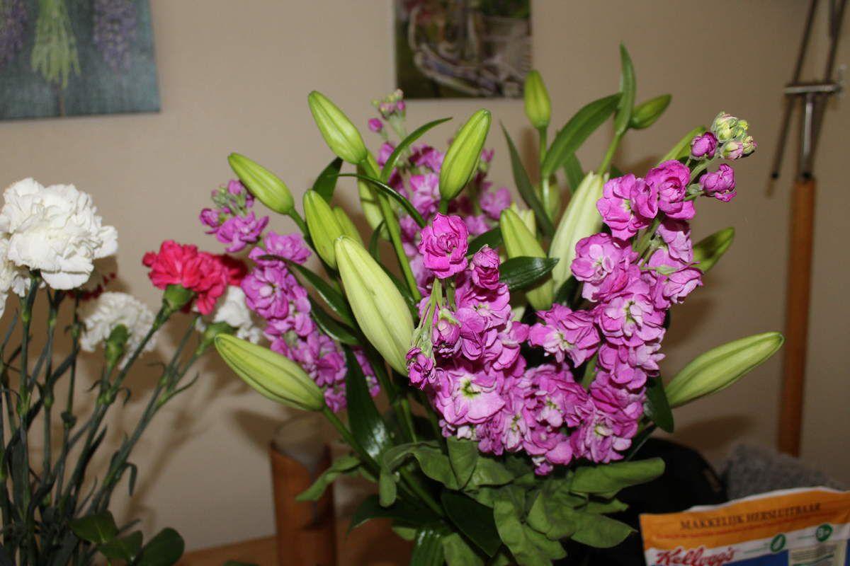 Choisir un bouquet de fleurs pour la f te des m res avb for Bouquet de fleurs pour un malade