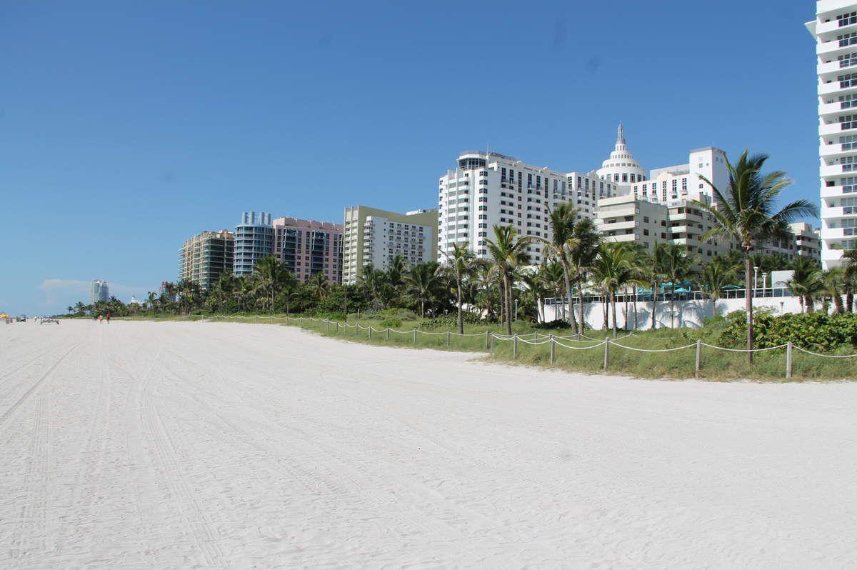 Miami Beach and Miami bayfront