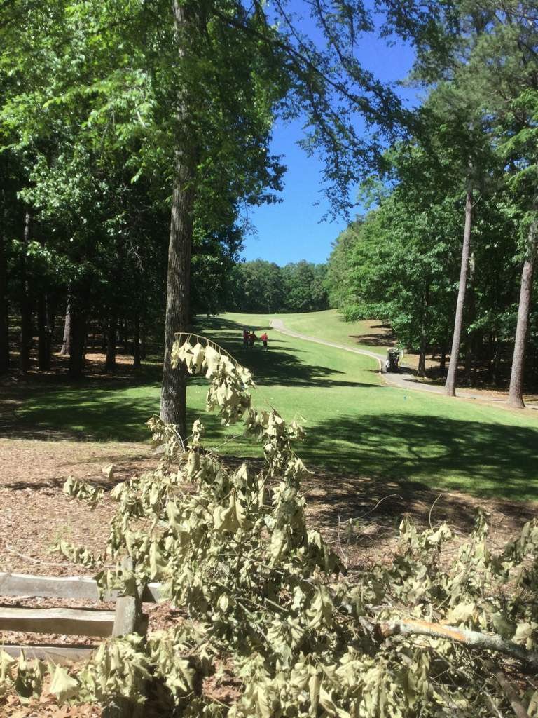 Hickory knob state resort park