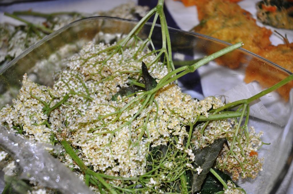 Cueillette de plantes en randonnant; la transformation a lieu au chalet où nous cuisinons joyeusement ensemble ces ingrédients que la nature a généreusement mis à notre disposition.