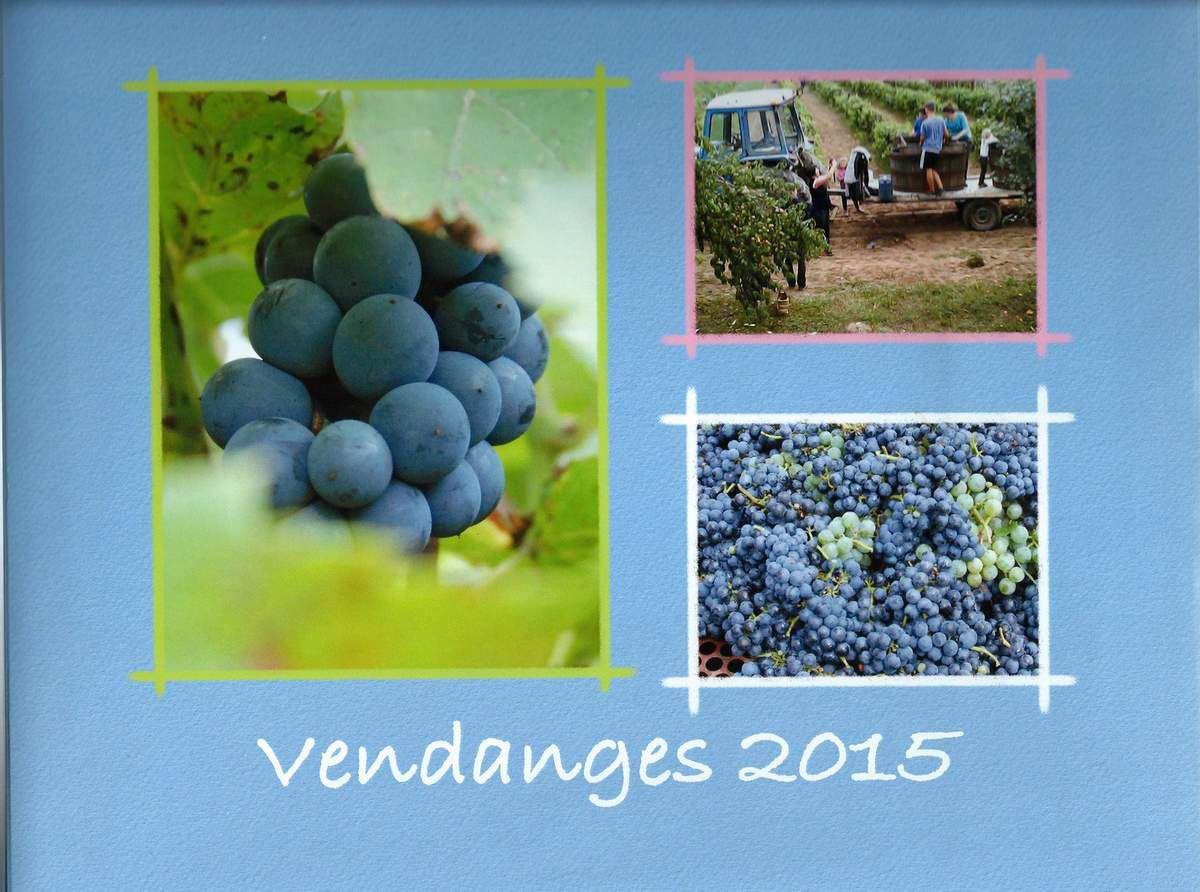 Albums photos Vendanges de 2007 à 2015. Collection particulière Philippe Billardey et famille.