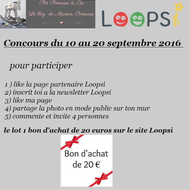 concours loopsi