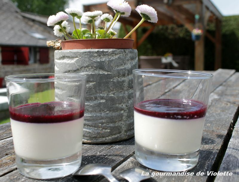 Panna cotta au coulis de myrtille