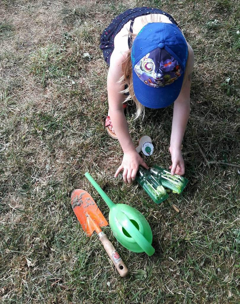 Plantations des courgettes par la chouquette