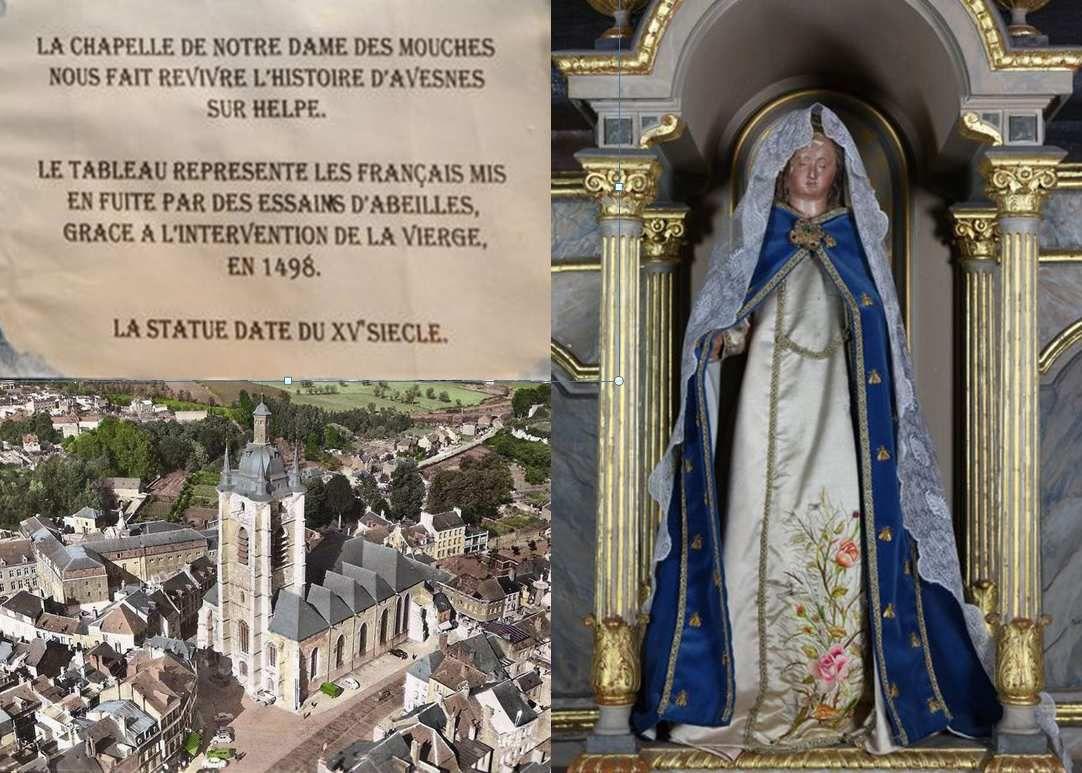 Notre Dame de mouches