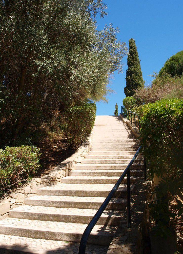 Un escalier...
