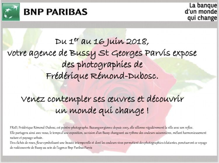 Exposition «Bussy & Roses»