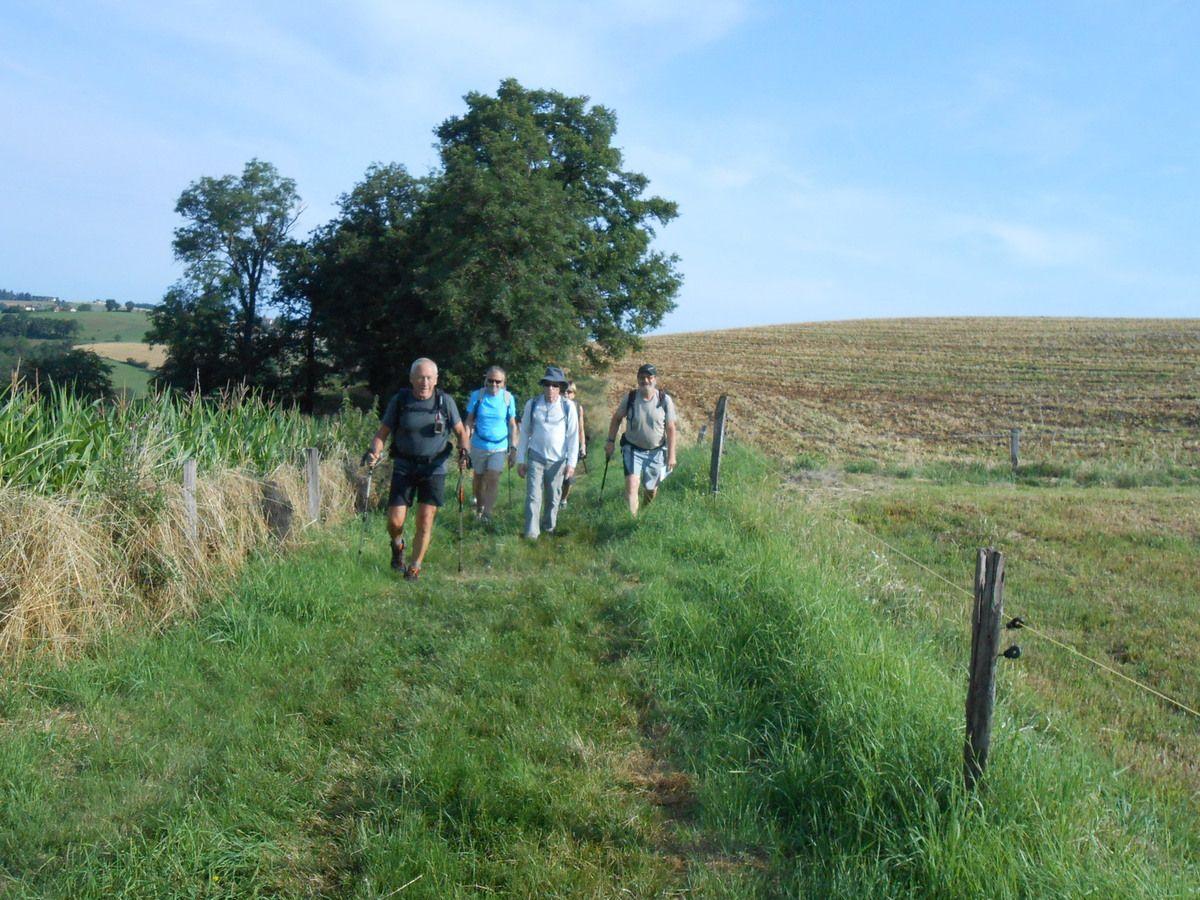 Au départ 14 marcheurs, le parcours ne tarde pas a grimper et une petite pose n'est pas de refus, dans cette région le sol n'est pas plat.On dirait qu'ils ont plantés des cailloux.
