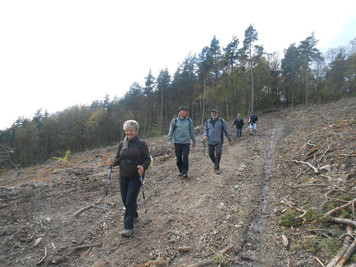 Ici René nous assure qu'il y avait un chemin on a du mal a le croire tellement le quartier a été arraché plus bas on retrouve la forêt et ses ruisseaux.