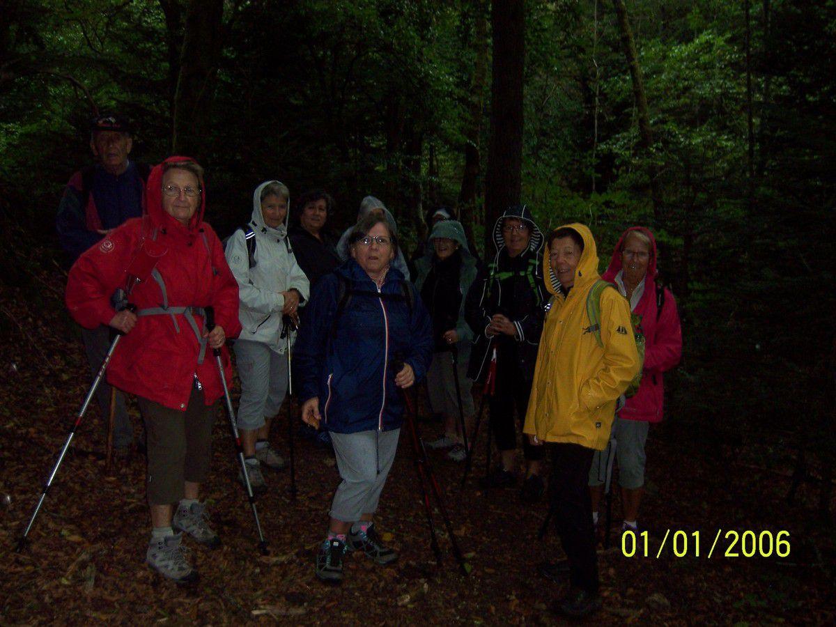 Dans les bois il y fait sombre et l'on croirait la nuit tombée, les kawais ne sont pas de restes mais ils sont seize courageux et courageuses à braver les intempéries.