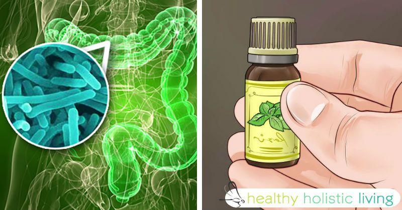 Comment vous pouvez utiliser les huiles essentielles pour tuer les bactéries infectieuses au lieu de la prise d'antibiotiques!
