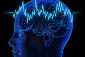 Attention ces ingrédients peuvent empoisonner votre cerveau !