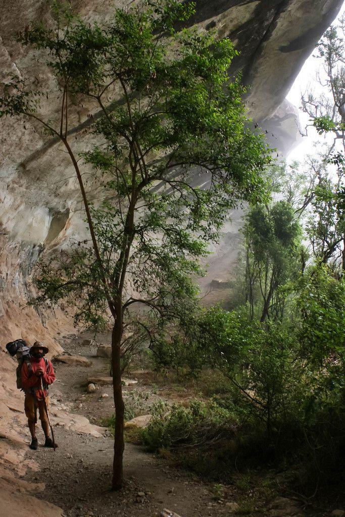 La vaste stable cave.