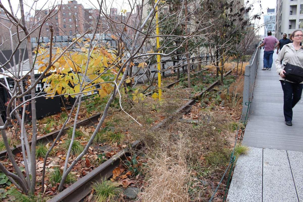 New York : High Line