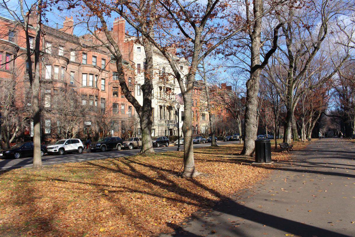 Boston : Promenade sur Commonwealth Avenue