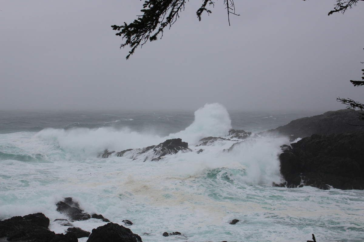 Pacific Wild Trail, Ucluelet