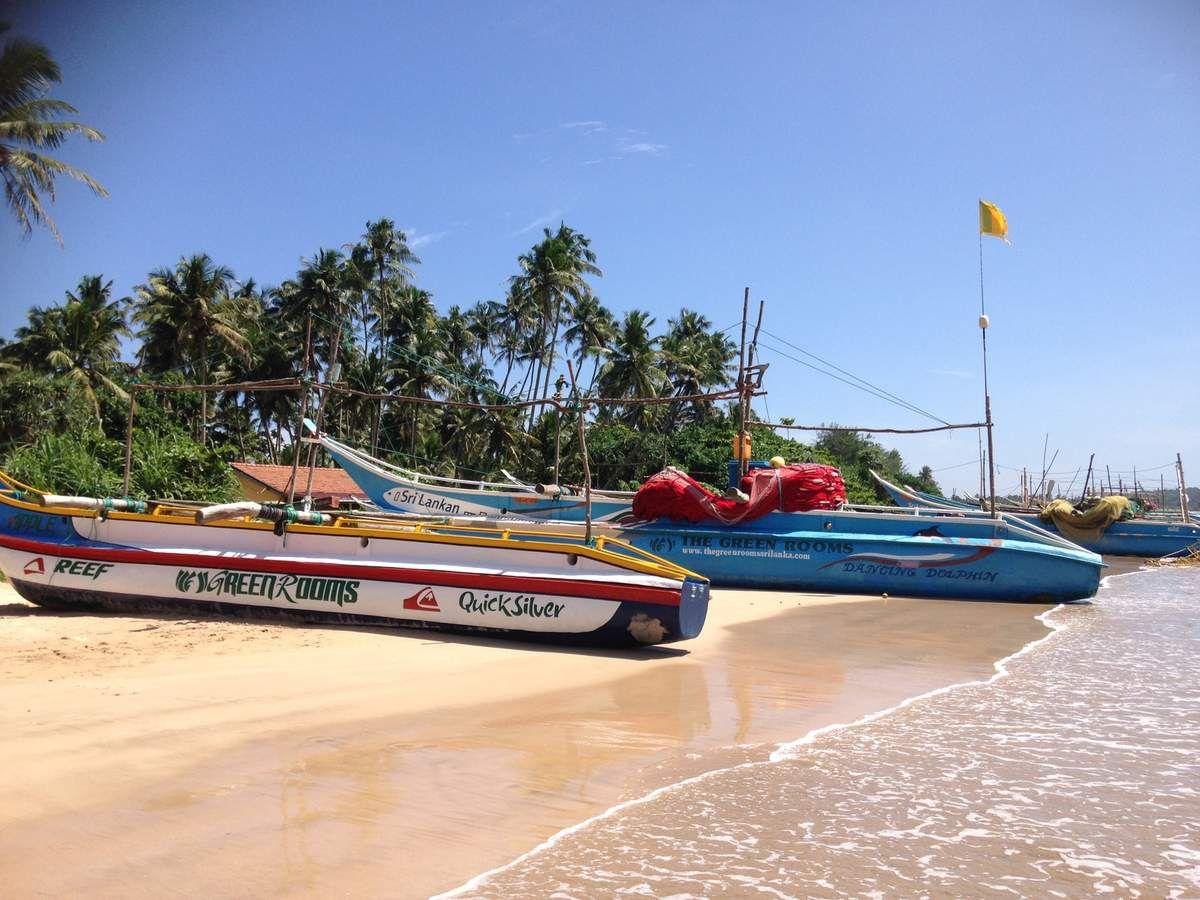 Cleaning the beach / Nettoyage de la plage