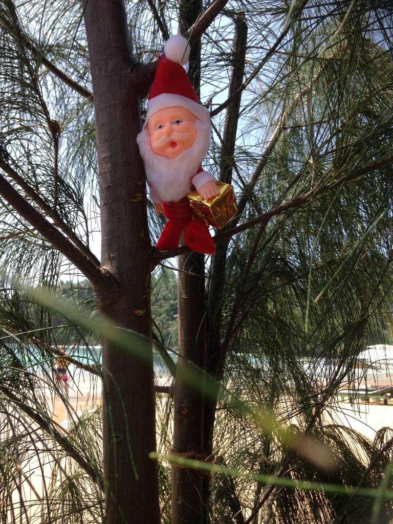 MERRY CHRISTMAS ! JOYEUX NOEL à tous ! Retour cette nuit en France ...