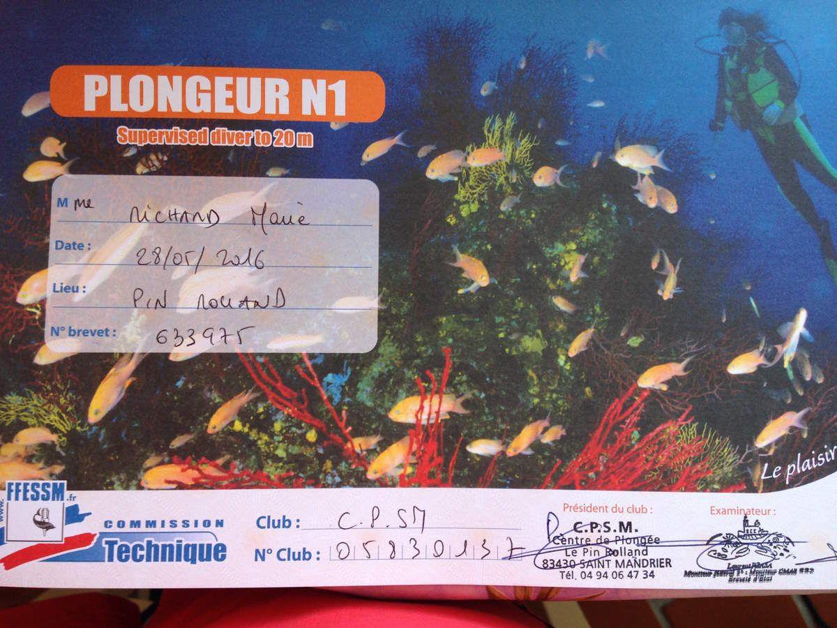 Une semaine de formation : J'ai passé mon Niveau 1 FFESSM de Plongée (Fédération Française d'Etudes et Sports Sous-Marins) dans un Club de plongée très pro.