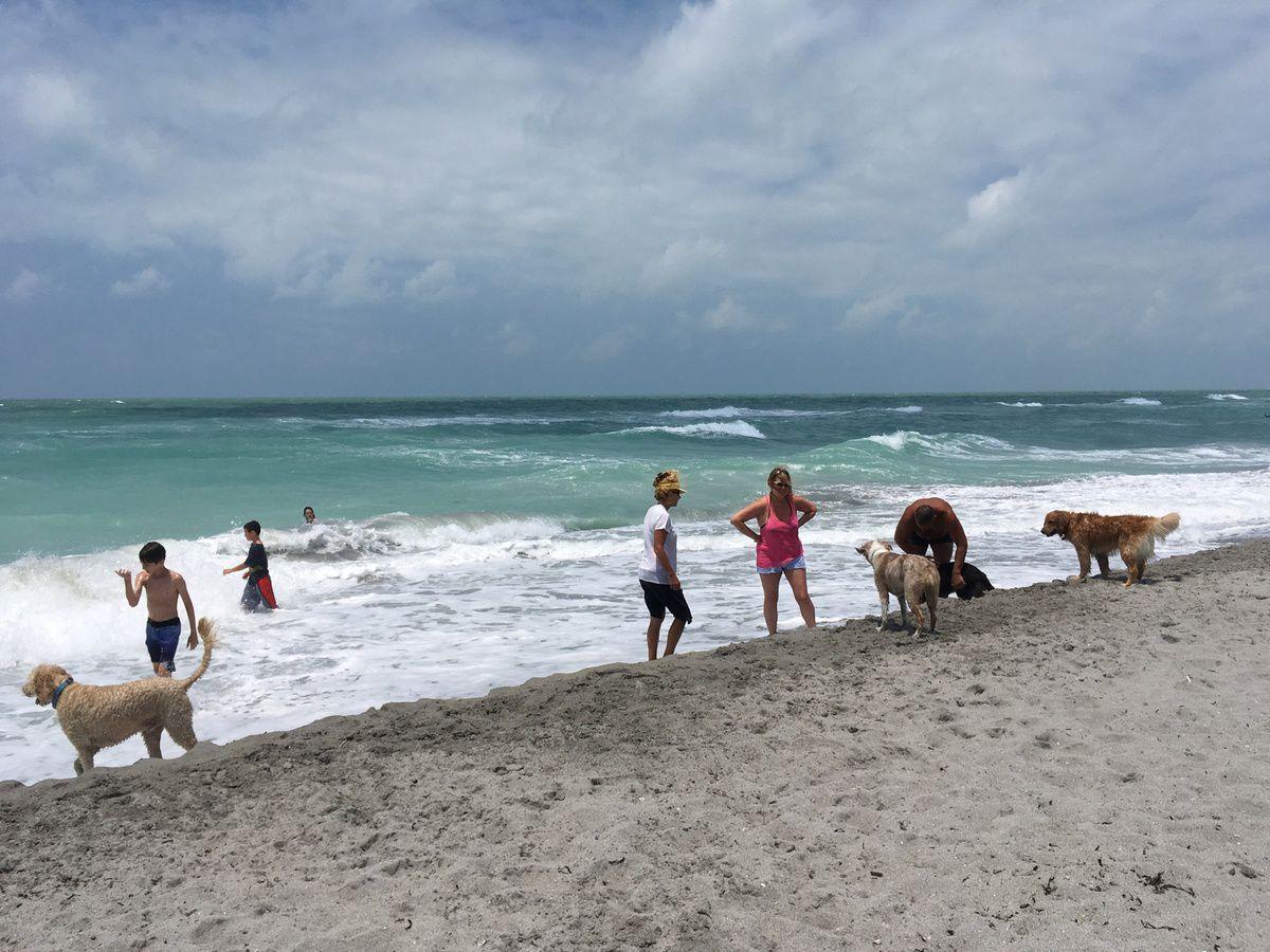 VENICE BEACH, FLORIDE