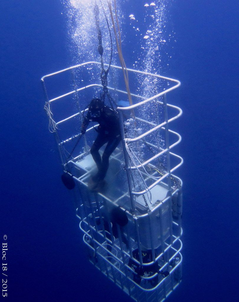 30 feet cage for two passengers