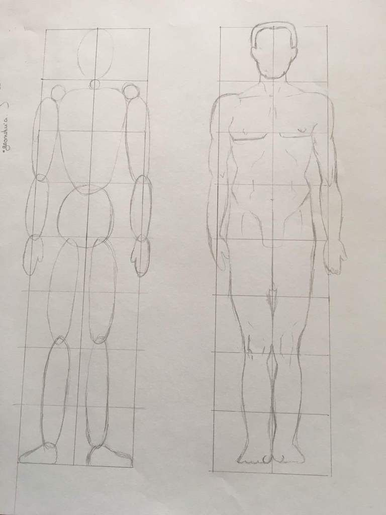 AA1-DRAWING THE BODY