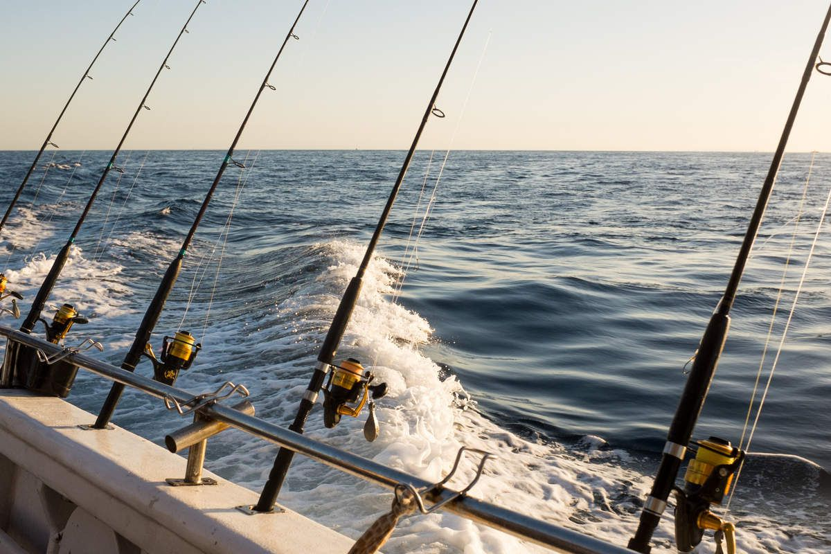 Fishing Charter Info and Reviews