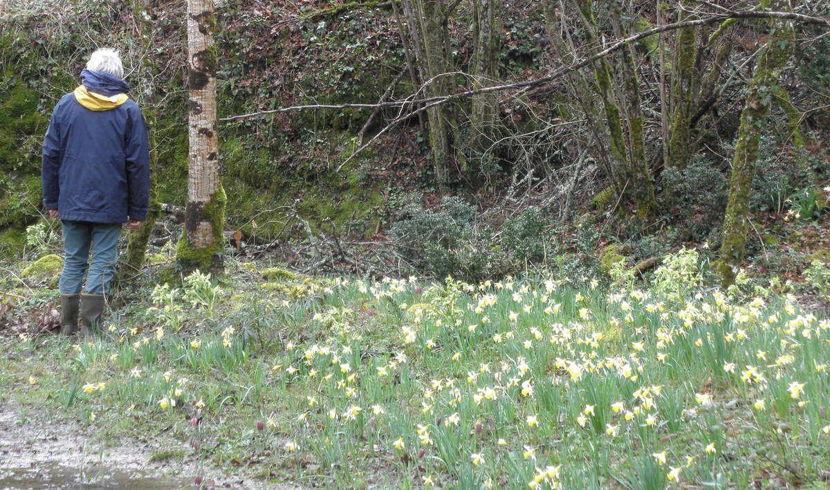 Compte-rendu de la &quot&#x3B;Balade dans un petit bout de Paradis en Tarn-et-Garonne&quot&#x3B;