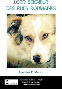 chronique 30 -17: Lord seigneur des rues roumaines de Blandine P. Martin
