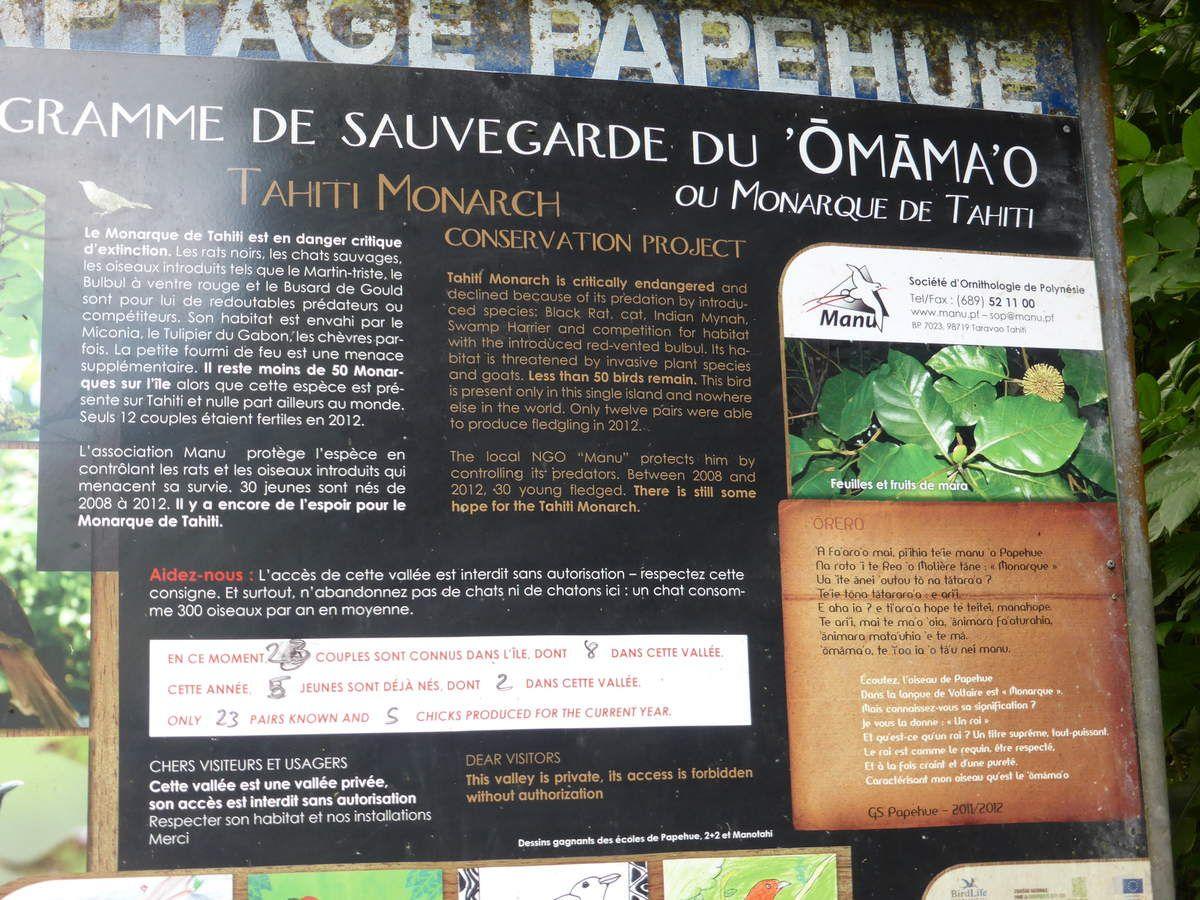 A LA RECHERCHE DU MONARQUE DE TAHITI