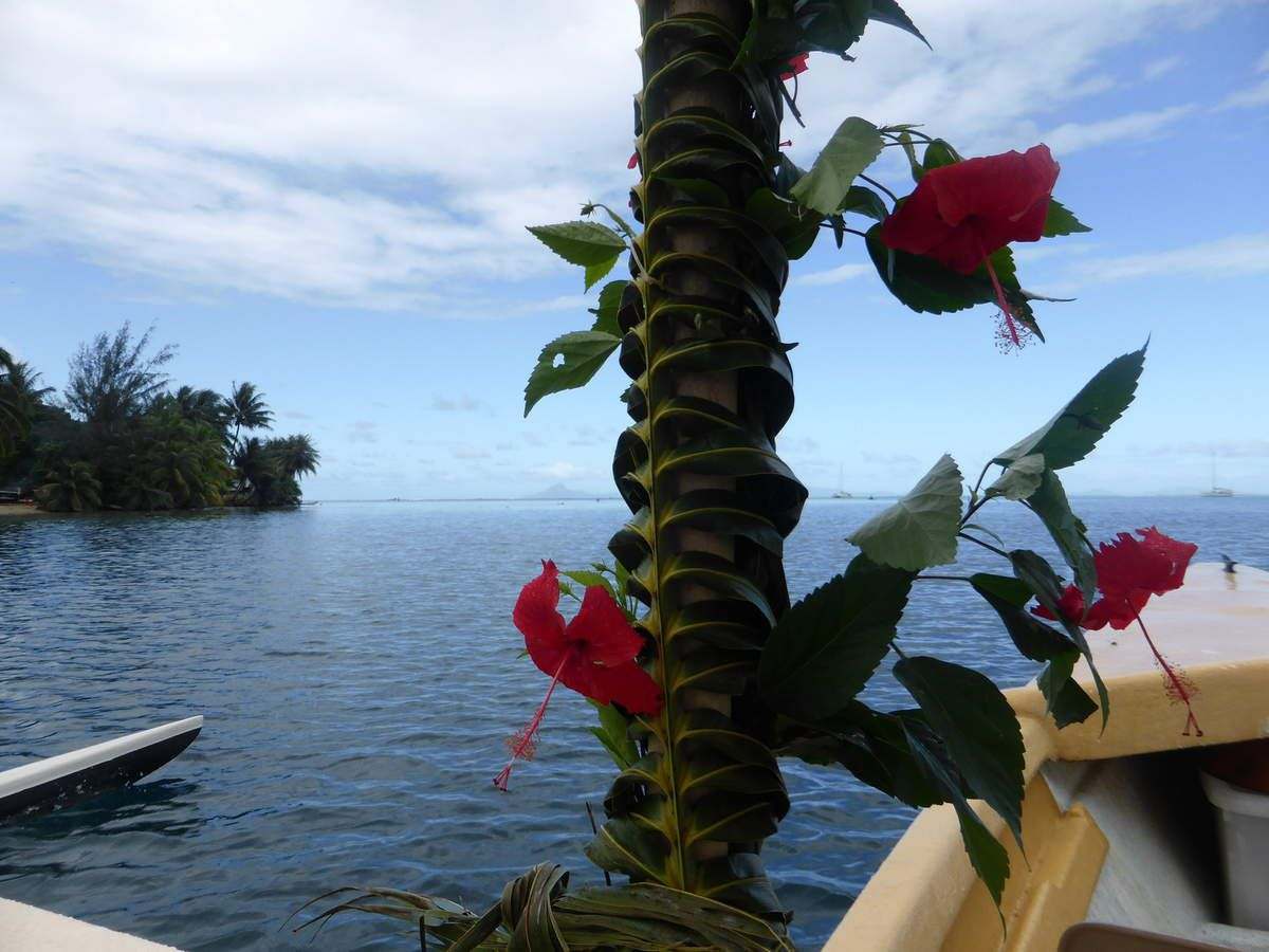 Pirogue#fleurdhibiscus#huahine#lagon#soleil#famille#vivre