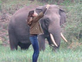 Me and the elephant