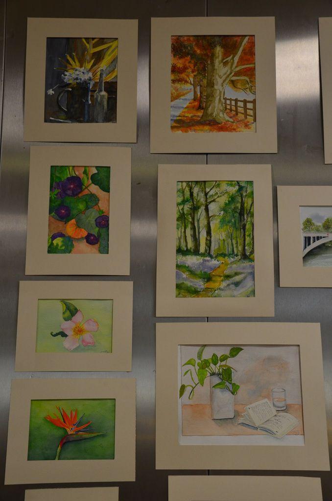 exposition, détails aquarelles