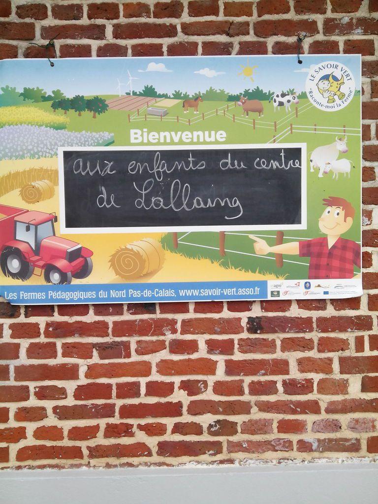 rencontre avec les animaux de la ferme, fabrication de pain et de farine, une journée bien remplie!