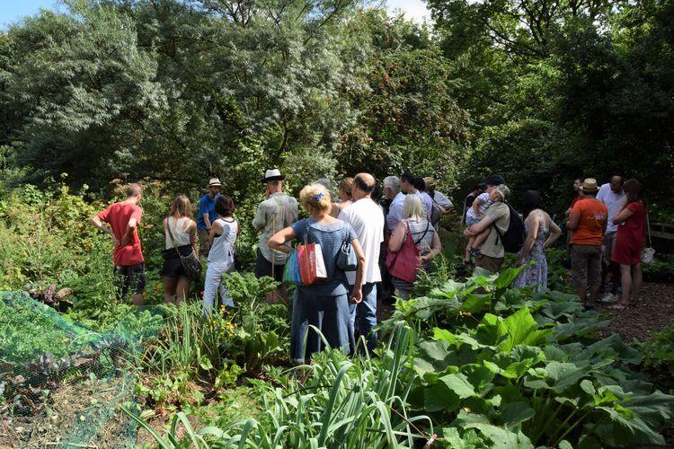 Les différents massifs de légumes se distinguent les uns des autres, facilitant la récolte