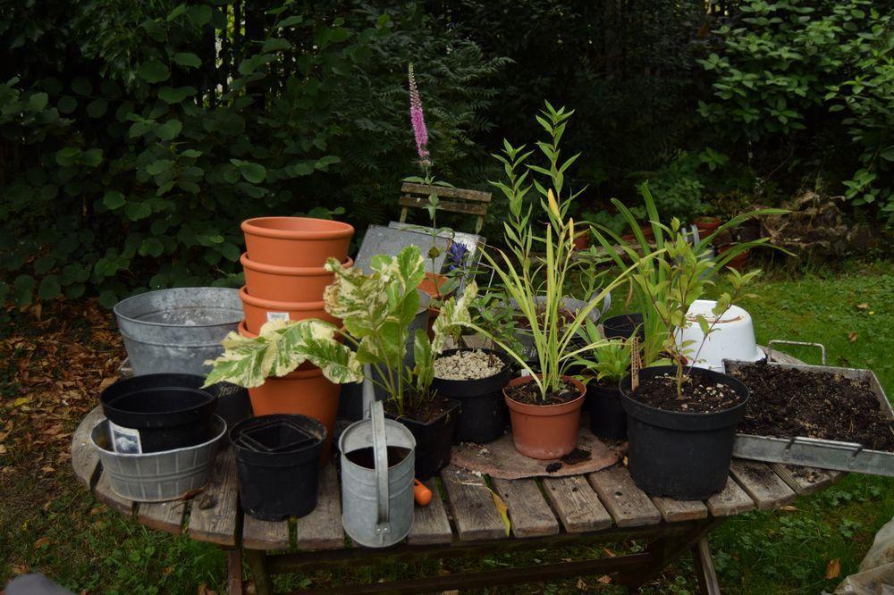 Le jardin de Berchigrange : comment en parler sans le trahir ?