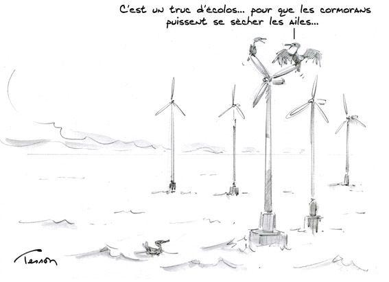 Quand l'écologie politico financière menace durablement votre environnement immédiat...
