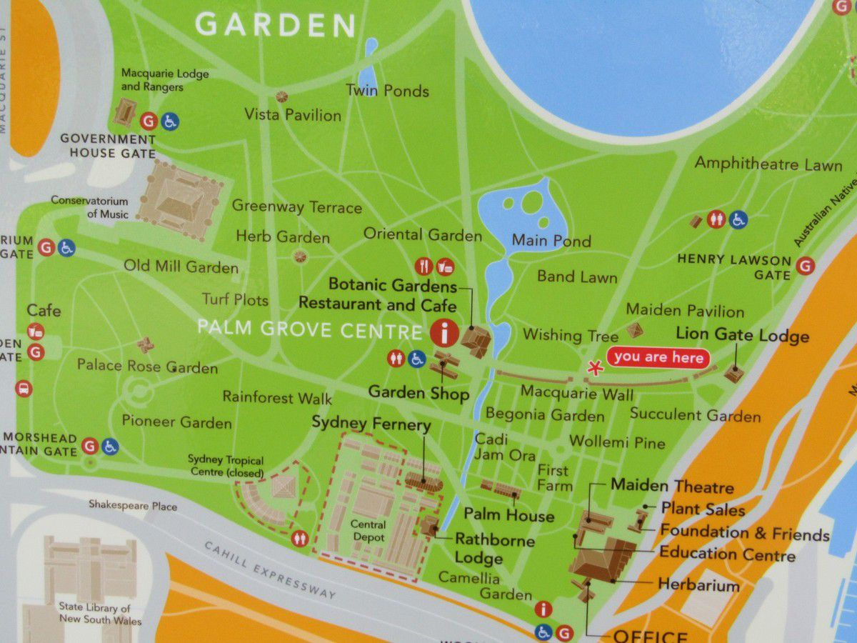 11 - Découverte de Sydney / Royal botanic garden