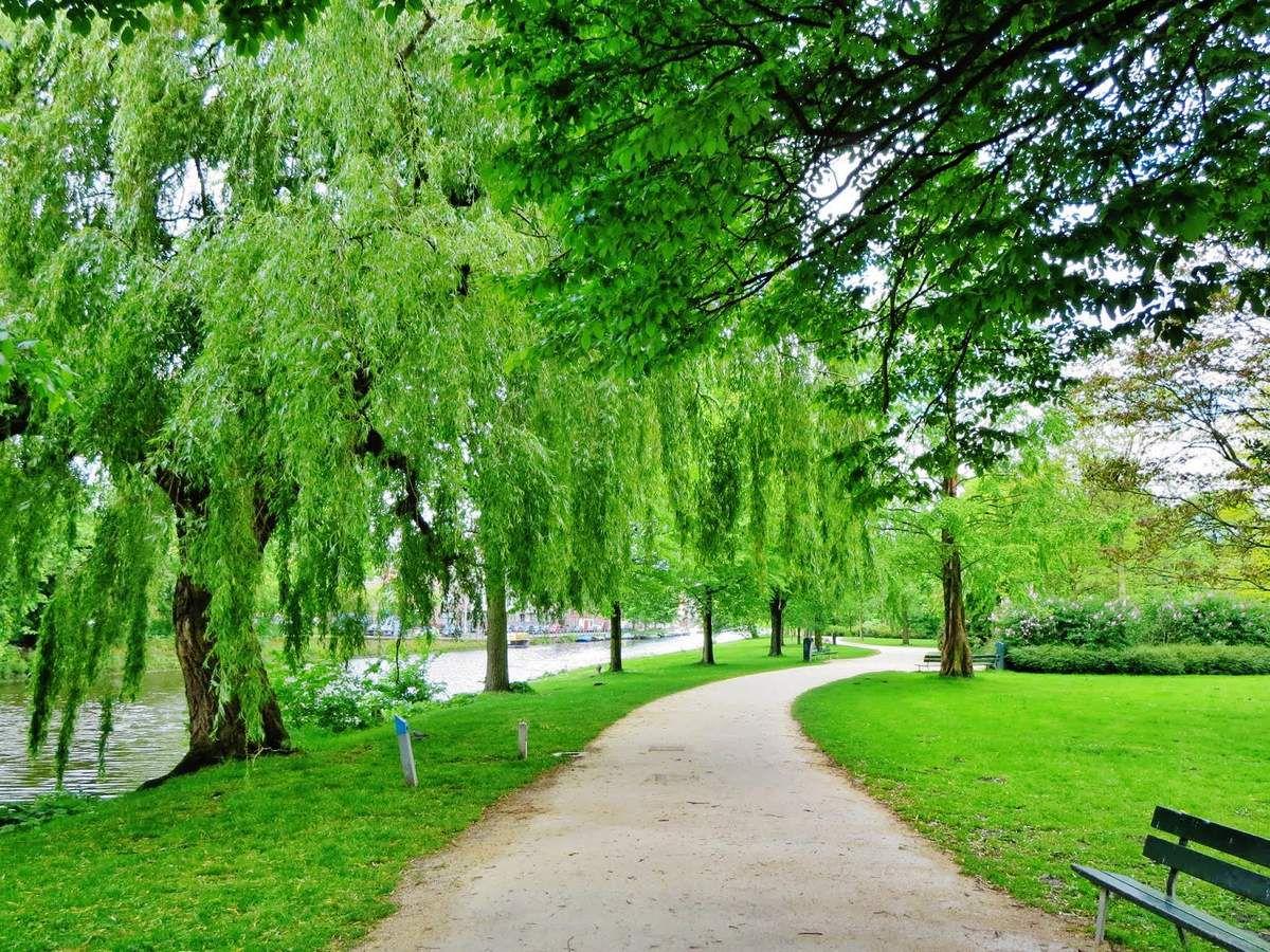 Westerpark - Tous droits réservés